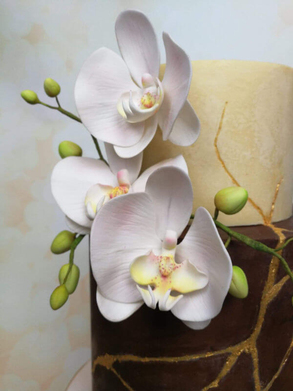 Sugar Crafted Orchids